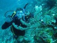 Biri Island Samar - Scuba Diving Philippines