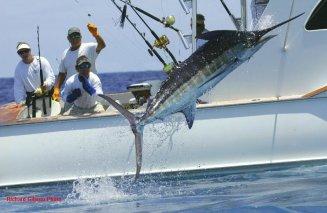 Siargao Philippines game fishing