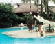 mactan maribago blue water resort