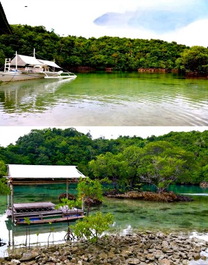 Off the Grid on Negros Occidental's Danjugan Island