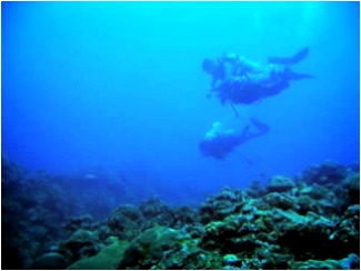 Albay Pursues 'Blue Economy' With Eco-Nautical Tourism - San Miguel Marine Sanctuary of Tabaco City