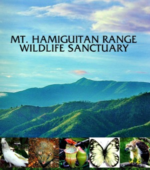 Mt. Hamiguitan Range Eco-Tourism Park - Priority Eco-Tourism Projects Launching in Davao Oriental
