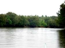 Liboganon River