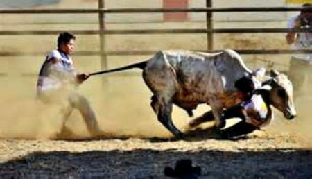Masbate's Rodeo Festival and Tourism Campaign Takes Off in April