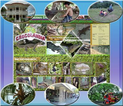 Cebu Country Side