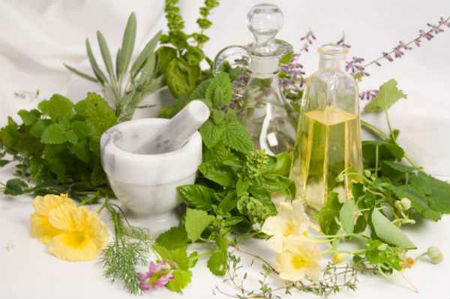 ing From Nature: DOH Endorses 10 Traditional Medicines for Disease Treatment