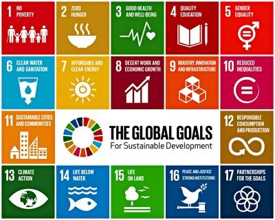 17 Sustainable Development Goals (SDGs)