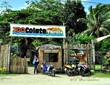 Bohol Travel - ZooColate Thrills Another Reason to Visit Bohol
