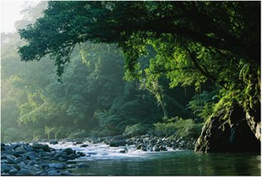 Sierra Madre Natural Park